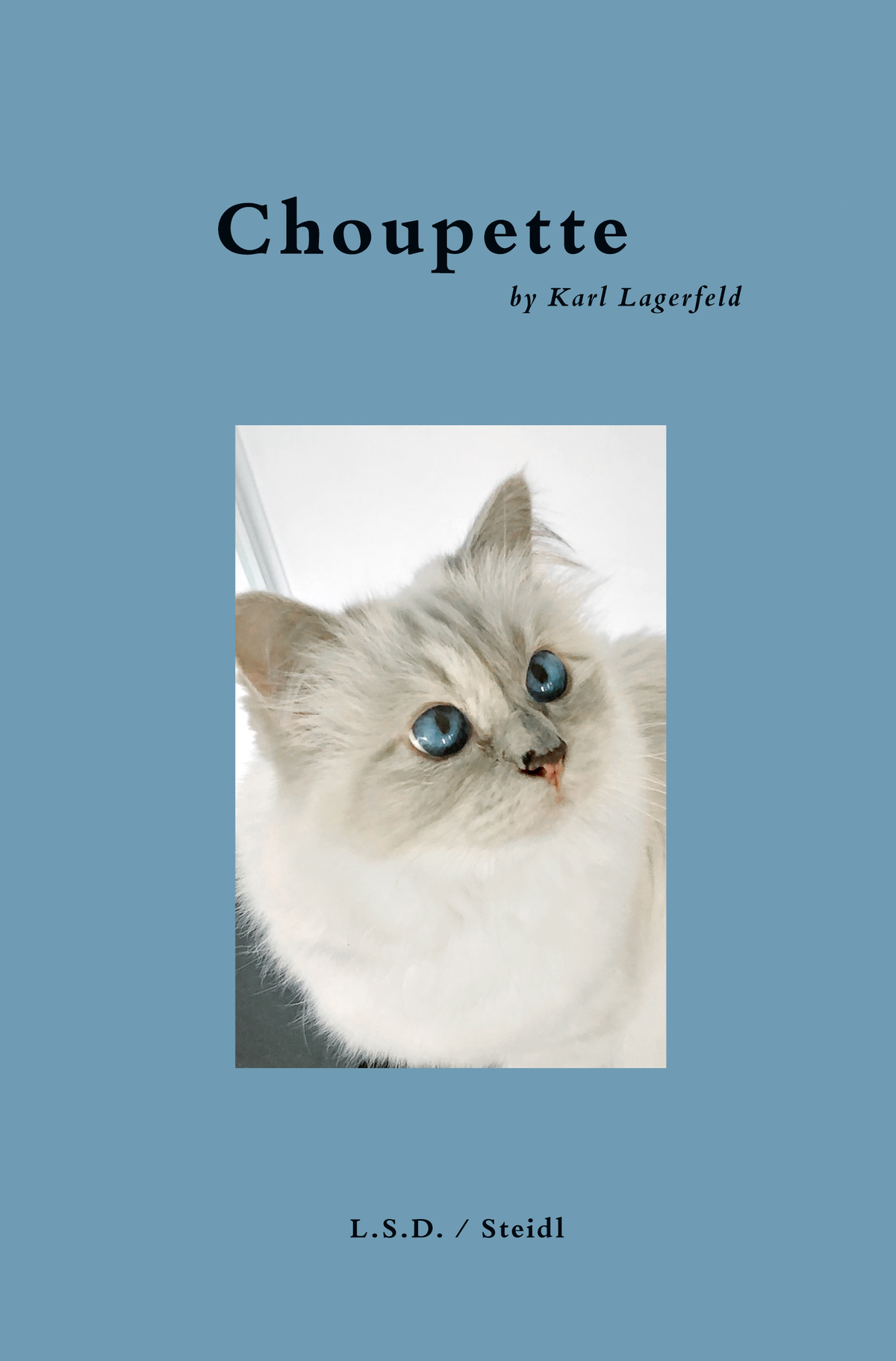 Scrapbook Of A Cat Choupette Karl Lagerfeld Steidl Verlag