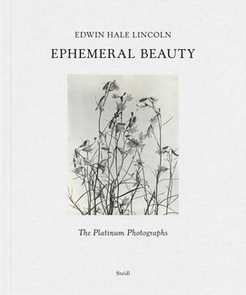 Ephemeral Beauty. The Platinum Photographs