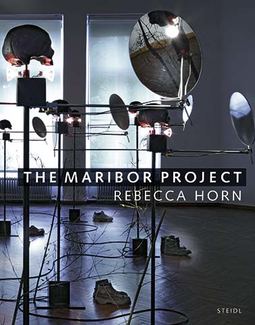 The Maribor Project