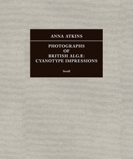 Photographs of British Algæ: Cyanotype Impressions (Sir John Herschel's Copy)