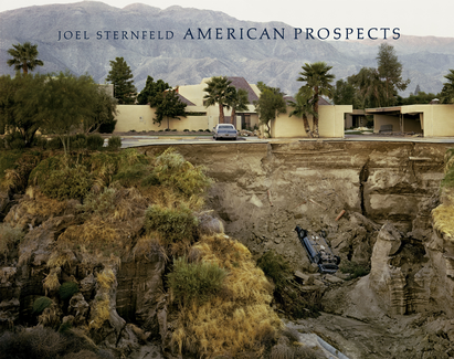 American Prospects - Revised Edition